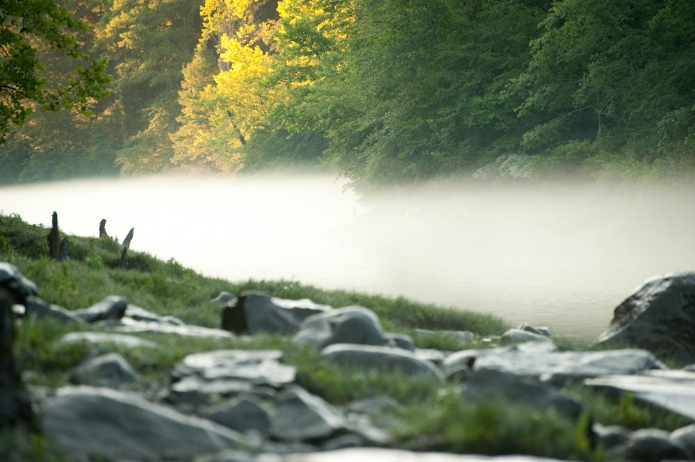 A thick fogs welcomes a cool summer morning on the Little Red River near Heber Springs, Arkansas.